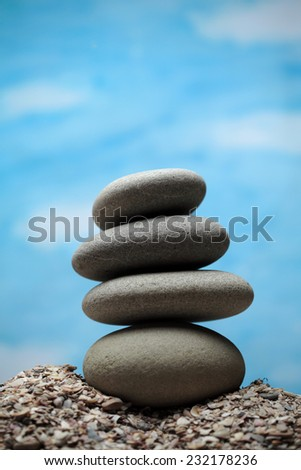 Black pebble stones  on crashed sea shells background, still life