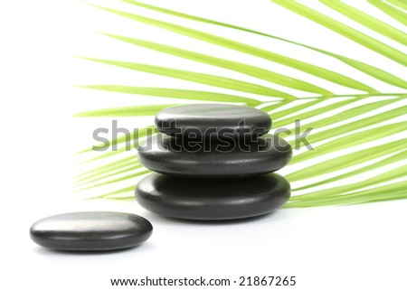 black pebbles with green leaves isolated on white