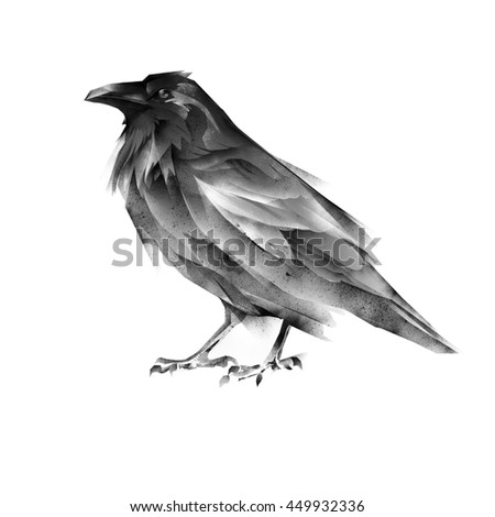 black raven - stock photo