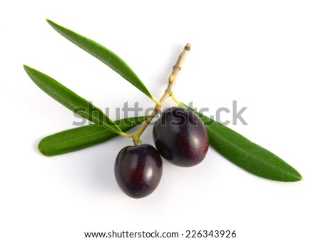 black raw olives with leaves isolated