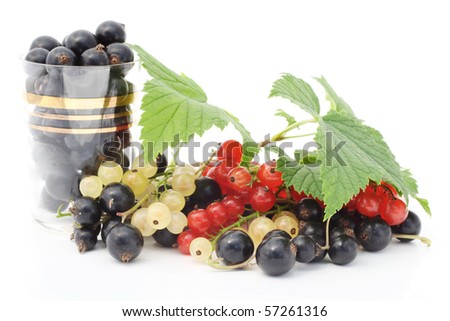 Black, red, white currant berries. Isolated on white.
