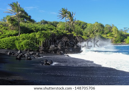 Black sand beach with crashing surf and palm trees - stock photo