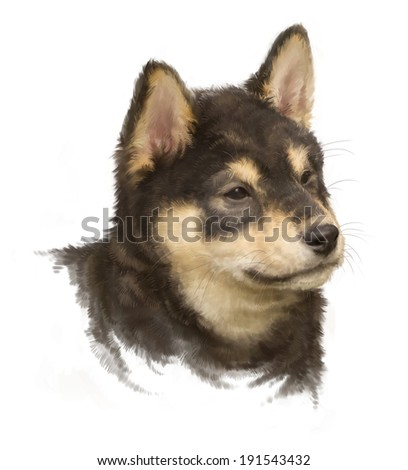 black shiba inu, puppy portrait on white, painted, rough brushstroke painterly look - stock photo
