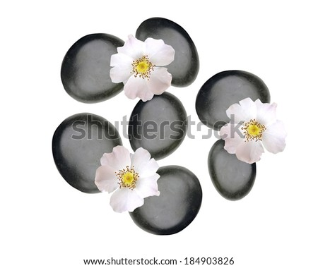 Black spa stones and white spring flowers isolated on white - stock photo