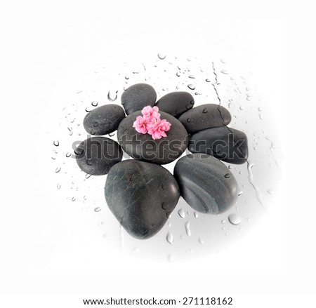 Black spa stones in the shape of a flower on water drops  surface isolated on white - stock photo