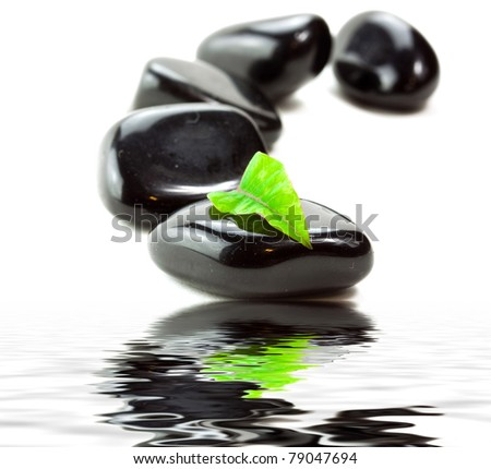 Black SPA stones with green leaf and reflection in water - stock photo