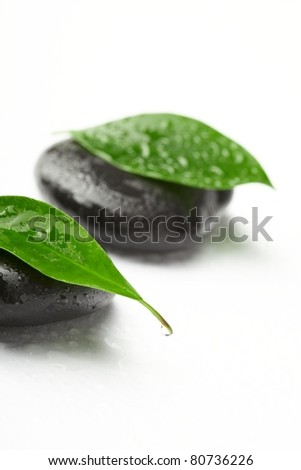 black stones and green leaves - stock photo