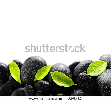 black stones and set of four green leaves
