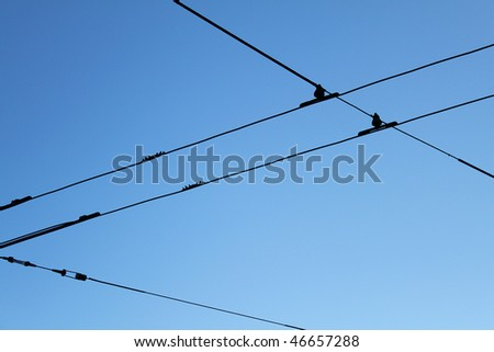 Black tram wires over blue sky - stock photo