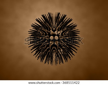 black virus - stock photo