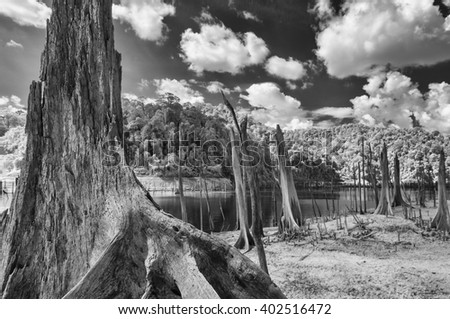 Black & White Infrared landscape. Lake and trees Thailand taken in Near Infrared - stock photo