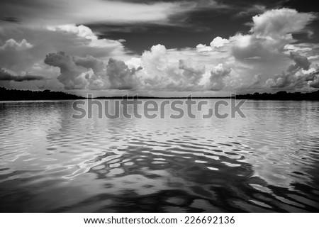 Black & white landscape of the amazon River - stock photo