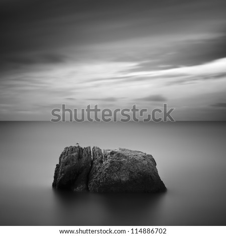 Black & White rocky seascape scene with seagull on stone, Crimea, Ukraine - stock photo
