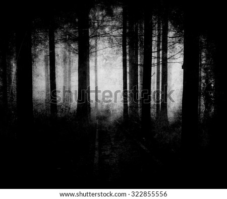 Black White Scary Halloween Forest Wallpaper - stock photo