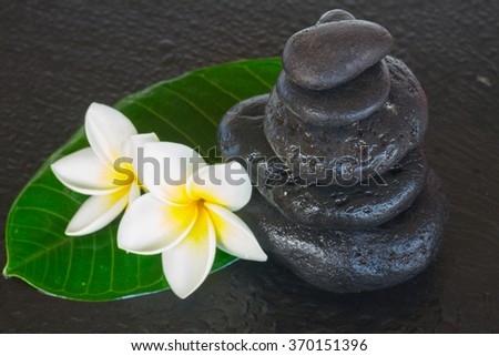 black zen stones with frangipani flowers and green leaf - stock photo