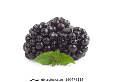 Blackberries and mint leaves isolated on white background - stock photo