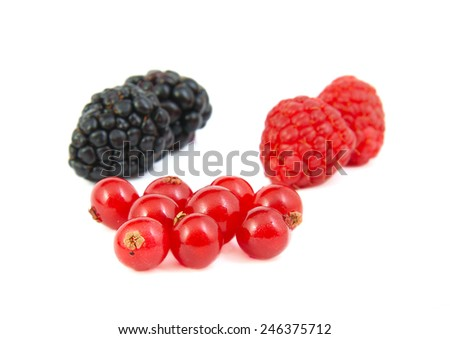 Blackberries, red currants and raspberries on white background - stock photo