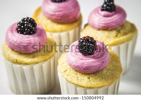 Blackberry Buttercream Vanilla Cupcakes in White Cupcake Wrappers on a White Wood Natural Background - stock photo