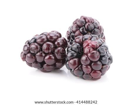 blackberry on white background - stock photo