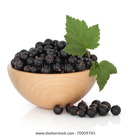 Blackcurrant fruit in a beech wood bowl with leaf sprig, isolated over white background. - stock photo