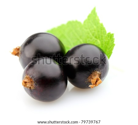 Blackcurrant with leaves - stock photo