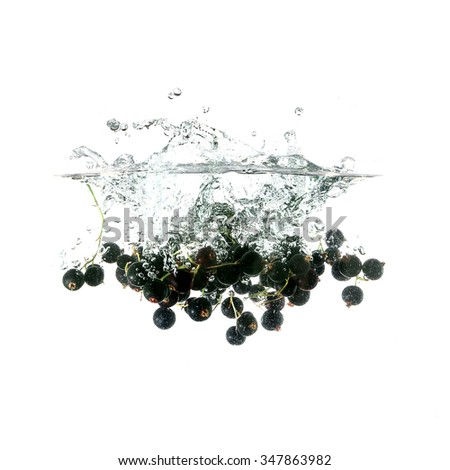 Blackcurrants splash on water, isolated on white background. Use for fresh drinks advertising. - stock photo