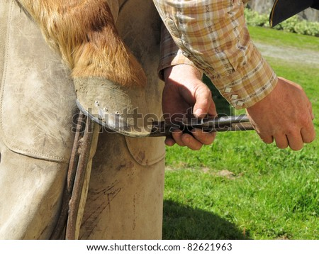 Blacksmith, or equine farrier, clinches the horse shoe nails to a horse's hoof.