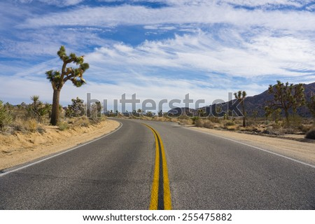 Blacktop road leads through the center of Joshua Tree National Park in southern California. - stock photo