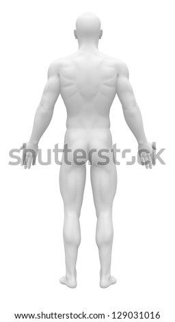 Blank Anatomy Figure - Back view - stock photo
