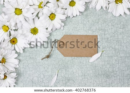 Blank card and daisies over green craquelure background with room for your text. - stock photo