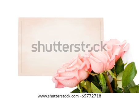 blank card for congratulations with roses - stock photo