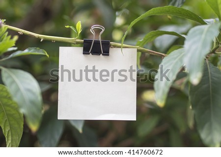Blank card hanging on tree