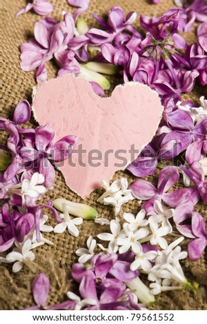 Blank card with lilac flowers - stock photo