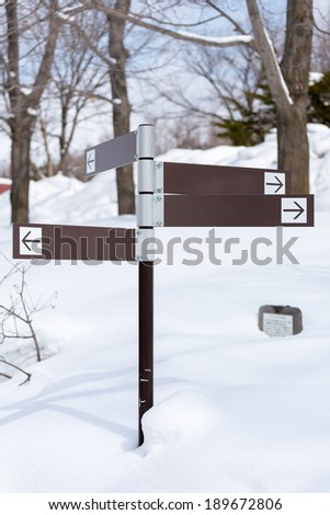 Blank direction signs in snow - stock photo