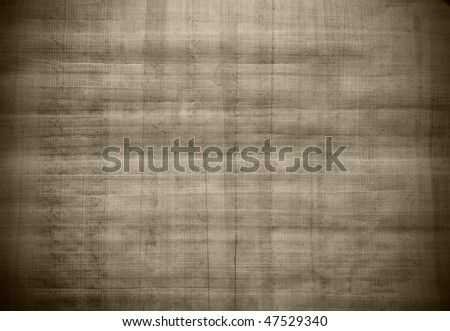 Blank Egyptian papyrus - stock photo