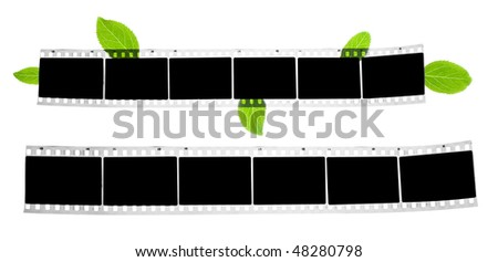 blank film strip with green leaves