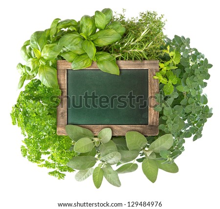 blank green blackboard with variety fresh herbs over white background. empty chalkboard for your text - stock photo