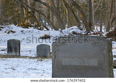 Blank headstone in very old cemetery with sunlit trees in background