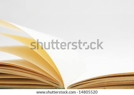 Blank pages of open book close-up - stock photo
