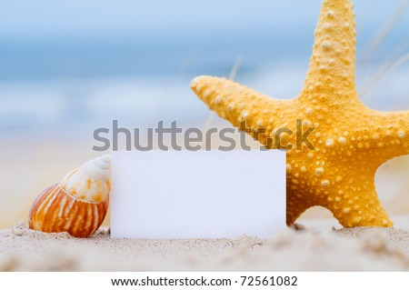 Blank white card for your message with a starfish and shell on summer beach - stock photo