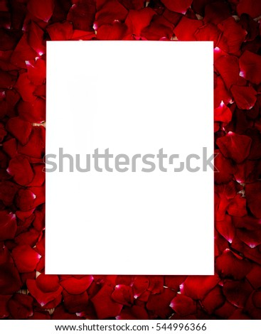 blank white gift card in bed of roses petals