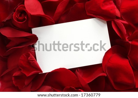 Blank white gift card on a bed of red rose petals, ready for your message. - stock photo