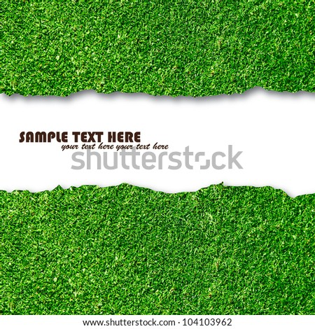 Mowing the Lawn Essay Sample