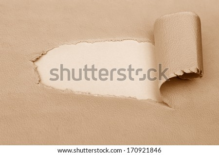 Blank white space behind torn brown paper - stock photo