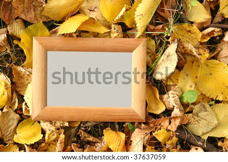 blank wooden frame on natural foliage background - stock photo