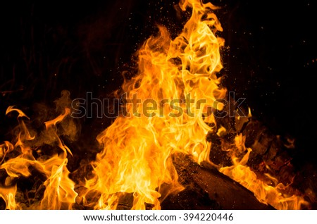 blazing flames on black background natural wood and fire the fire texture - stock photo