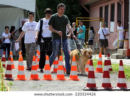Blind man with his guide dog/Sofia, Bulgaria - June 25, 2014: A blind man is training with his Golder retriever guide dog.  - stock photo