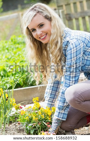 Blonde woman planting yellow flowers smiling at camera while working in the garden - stock photo