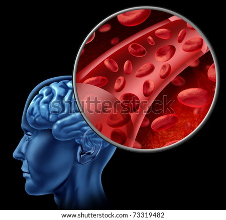 Blood cells in the brain flowing through veins and human circulatory system representing a medical health care symbol relating to stroke or circulation issues. - stock photo