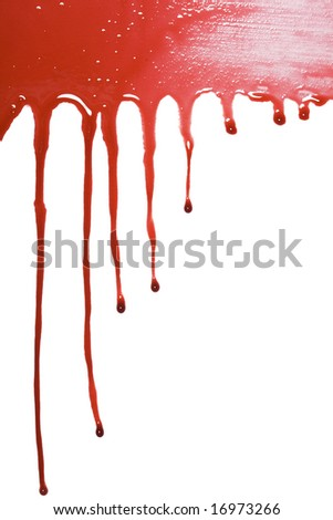 Blood drip pattern isolated on a white background
